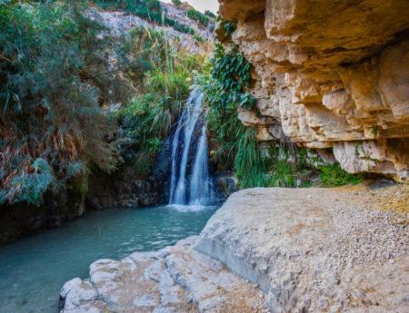 Ein Gedi Reserve at the Dead Sea 2021 (Detail)