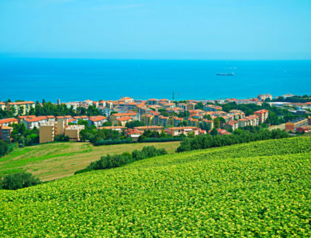 Best attractions in Ancona