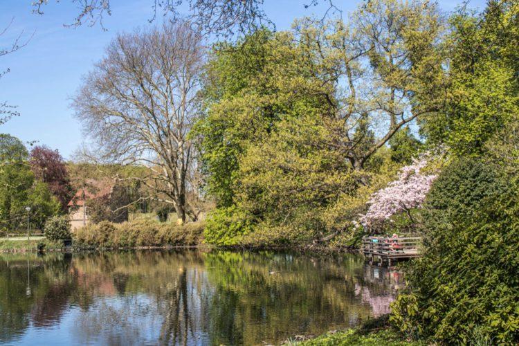 Romberg Park - Dortmund attractions