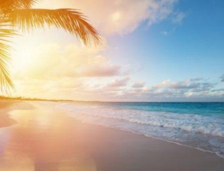 Best attractions in Jamaica: Top 24
