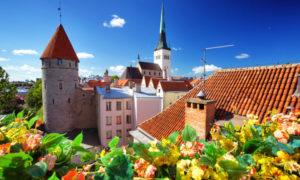 Best attractions in Tallinn: Top 31