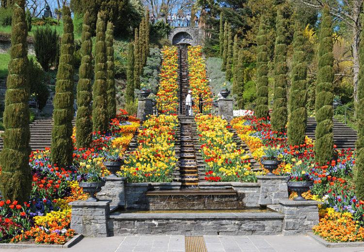 Home Attractions Germany - Mainau Flower Island