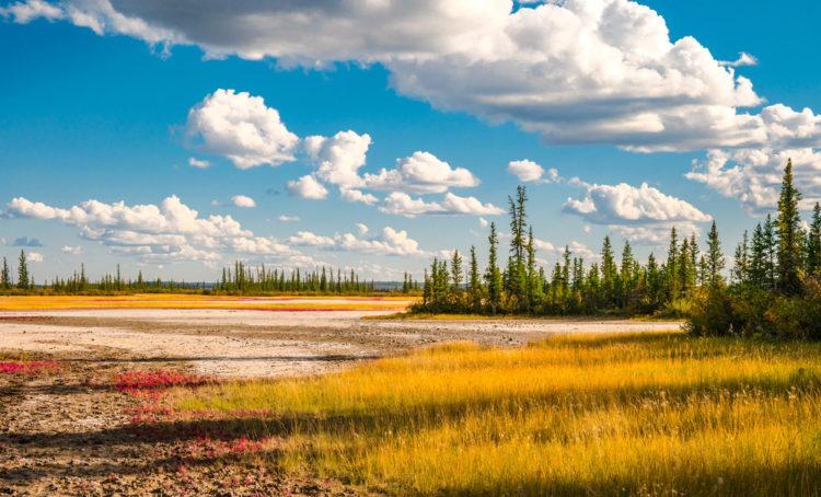 Достопримечательности Канады - Национальный парк Вуд-Баффало