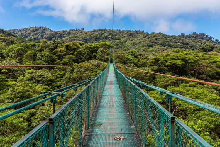 Что посмотреть в Коста-Рике - Национальный парк Монтеверде