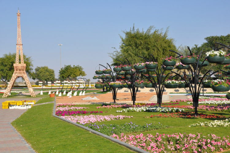 Достопримечательности ОАЭ - Парк цветов в Аль-Айне
