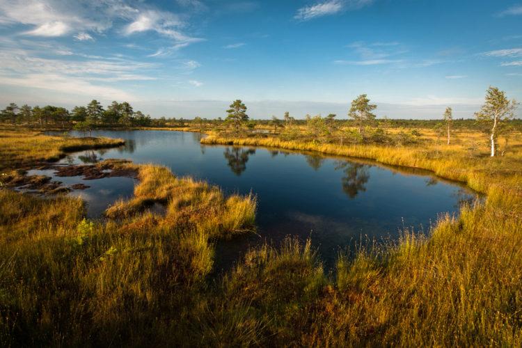 Что посмотреть в Эстонии - Национальный парк Соомаа