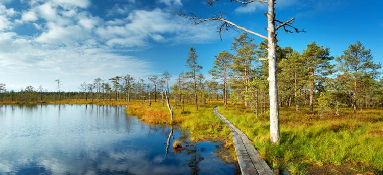 Достопримечательности Эстонии - Национальный парк Лахемаа