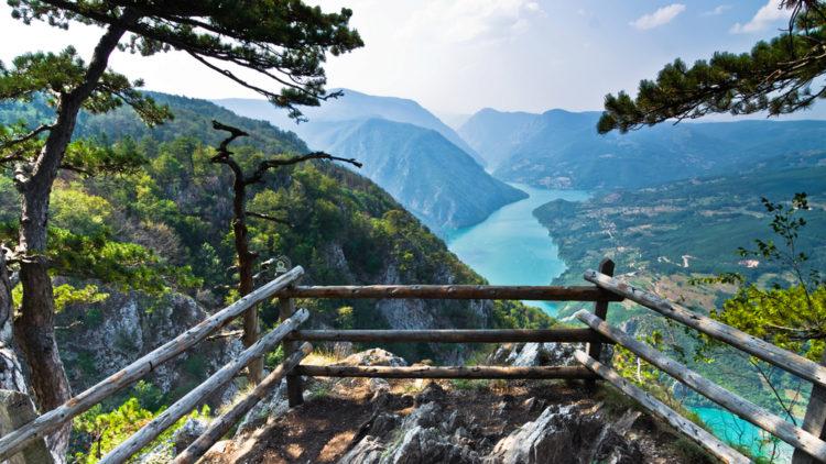 Что посмотреть в Сербии - Национальный парк Тара