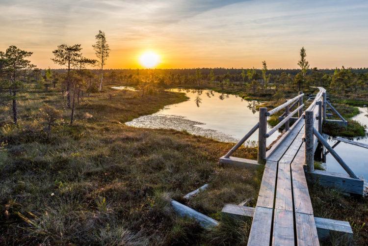 Национальный парк Кемери - достопримечательности Латвии