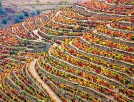Достопримечательности Португалии: Топ-25