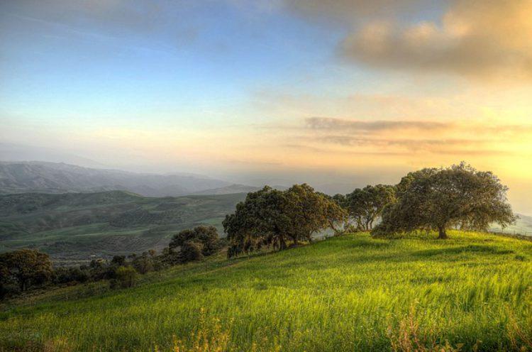 Природа Андалусии - достопримечательности Андалусии, Испания