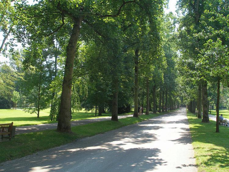 Аллея в парке города Баден-Баден в Германии