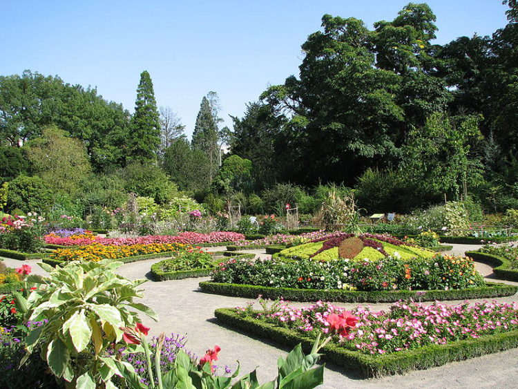Ботанический сад в Парке де ла Тете д'Ор в Лионе - достопримечательности Лиона, Франция