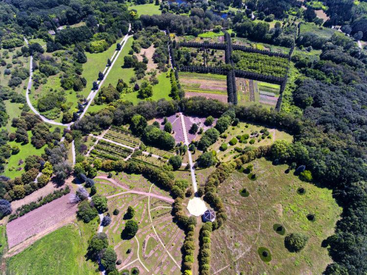 Кишиневский ботанический сад - достопримечательности Молдавии