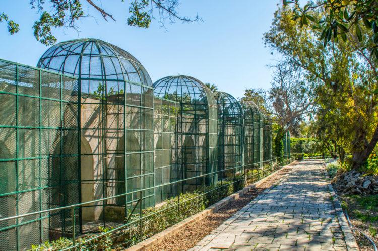 Ботанический сад святого Антония - достопримечательности Мальты