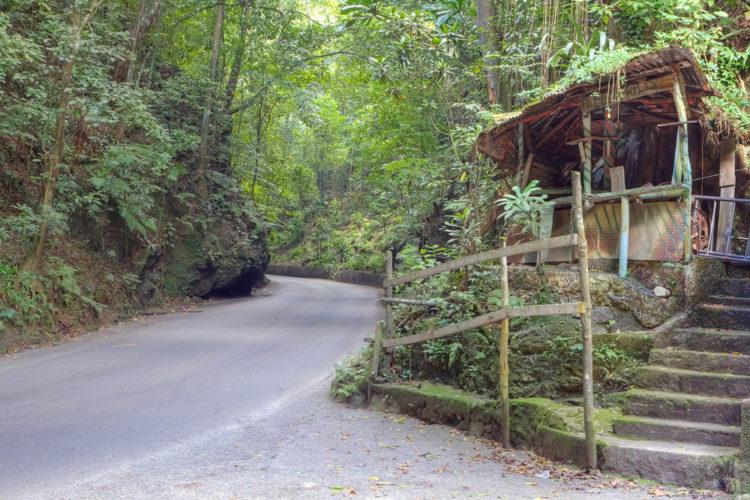 Ферн Галли-роуд - достопримечательности Ямайки