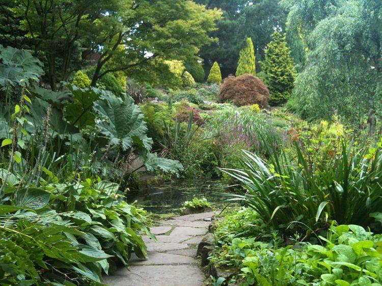 Ботанический сад Флетчер Мосс -Что посмотреть в Манчестере