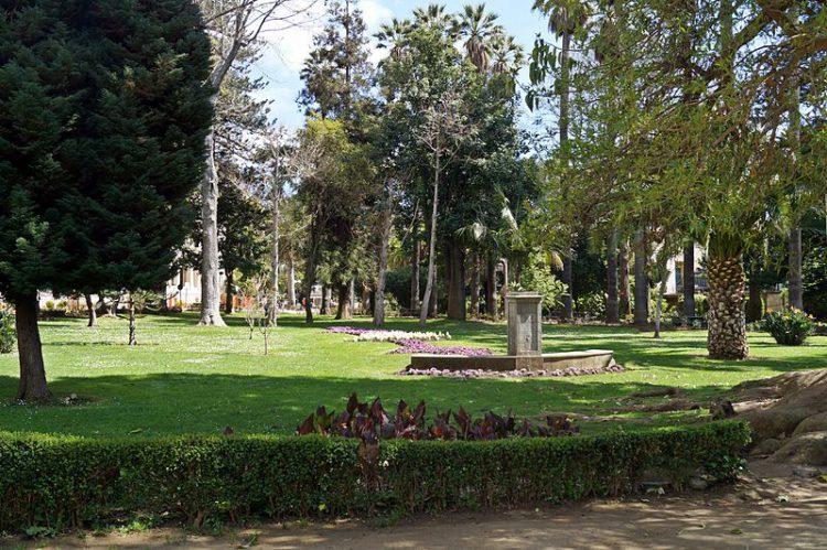Ботанический сад Винья-дель-Мар - достопримечательности Чили