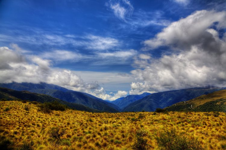 Национальный парк Ману - достопримечательности Перу