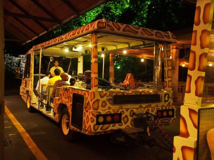 Ночное сафари (Night Safari in Singapore) - достопримечательности Сингапура
