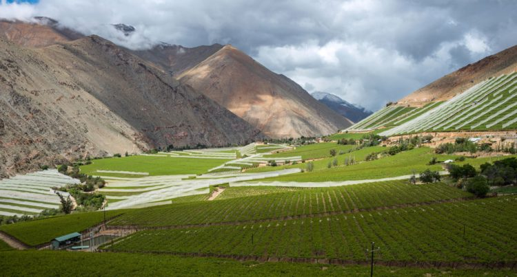 Долина Эльки - достопримечательности Чили
