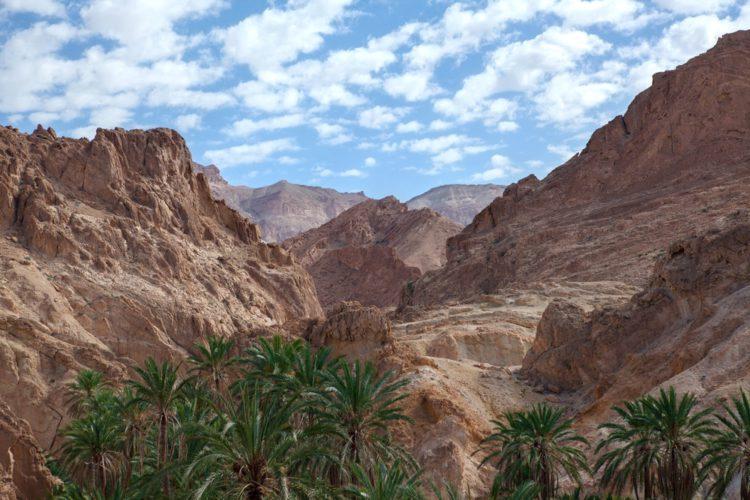 Атласские горы - достопримечательности Туниса