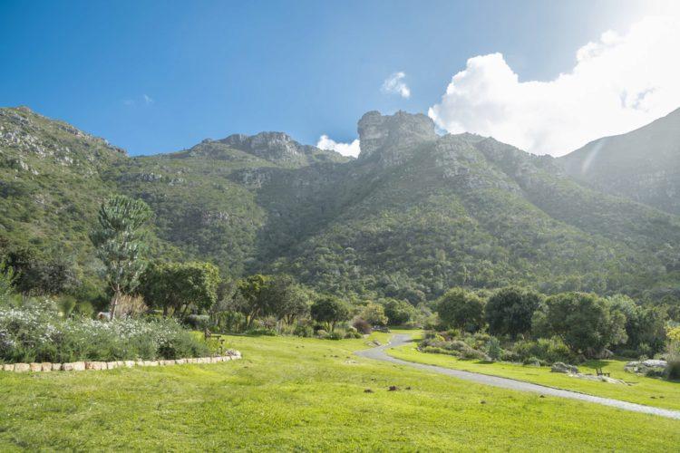 Ботанический сад Кирстенбош - достопримечательности ЮАР