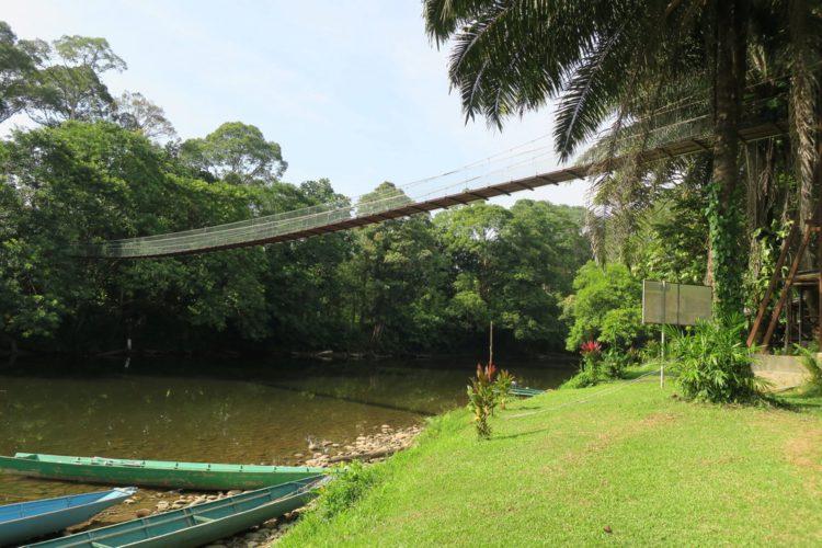 Национальный парк Улу-Тембуронг - что посмотреть в Брунее