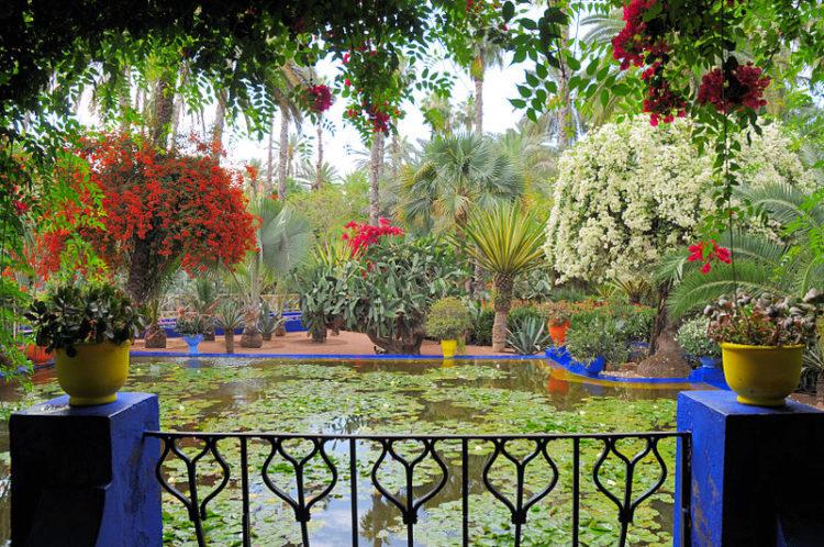 Сад Мажорель - достопримечательности Марокко