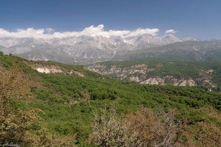 Большой ореховый лес в Арсланбобе - достопримечательности Киргизии
