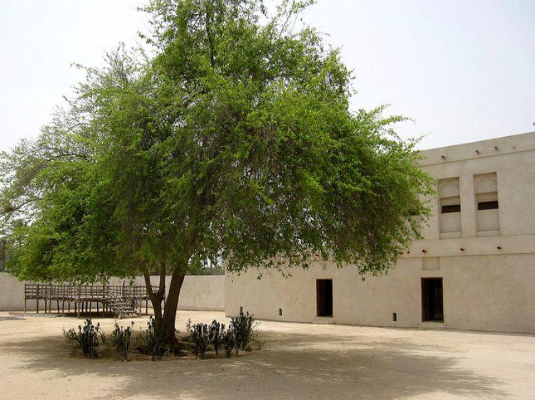 Дом Аль-Джасра - достопримечательности Бахрейна