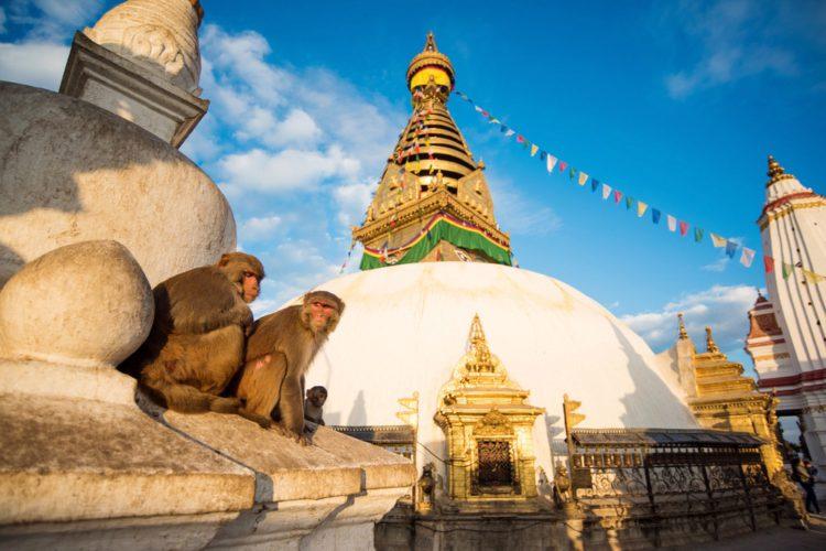 Храмовый центр Сваямбунатх - достопримечательности Непала