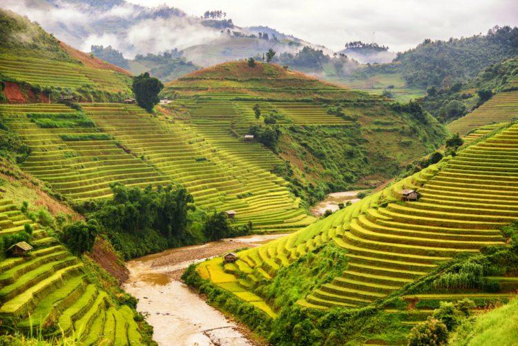 Рисовые террасы в Филиппинских Кордильерах - достопримечательности Филиппин