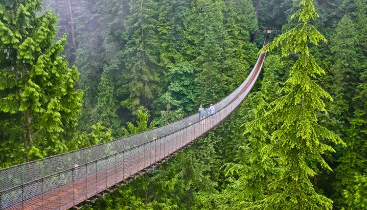 Подвесной мост Капилано - что посмотреть в Ванкувере
