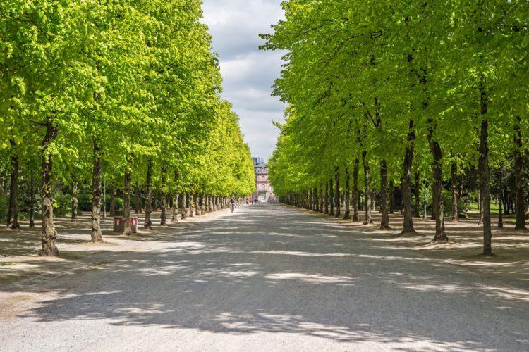 Парк Хофгартен - достопримечательности Дюссельдорфа