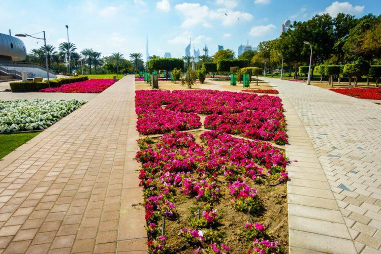Парк Забиль - достопримечательности Дубая