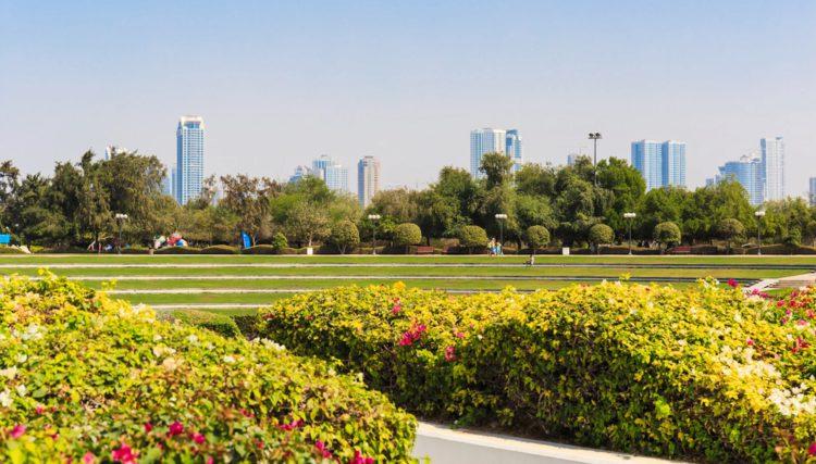 Джумейра Бич Парк - достопримечательности Дубая