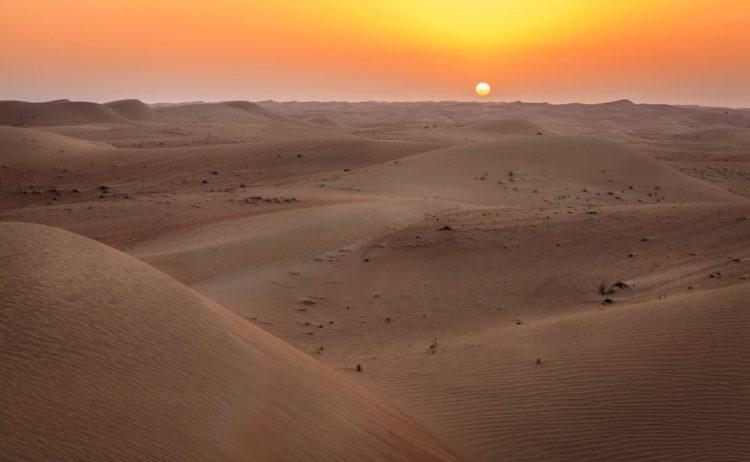 Дубайский пустынный заповедник - Что посмотреть в Дубае