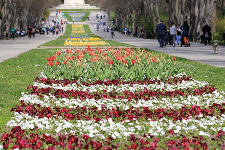 Приморский парк - достопримечательности Варны