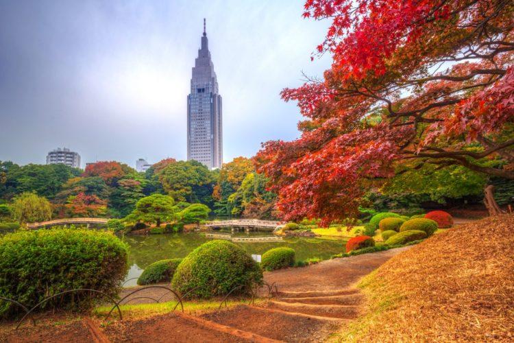 Парк Синдзюку Гёэн - достопримечательности Токио