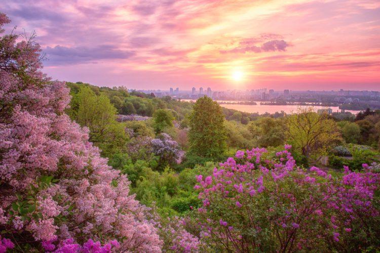 Ботанический сад имени Н.Н. Гришко - достопримечательности Киева