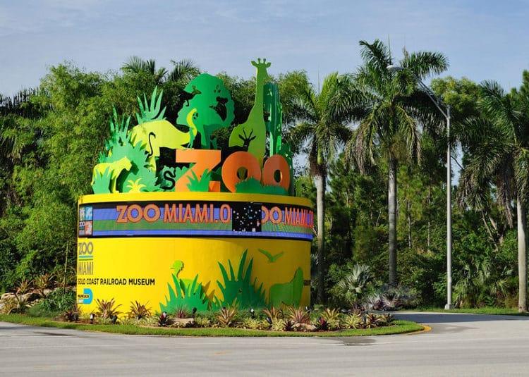 Зоопарк Майами - достопримечательности Майами