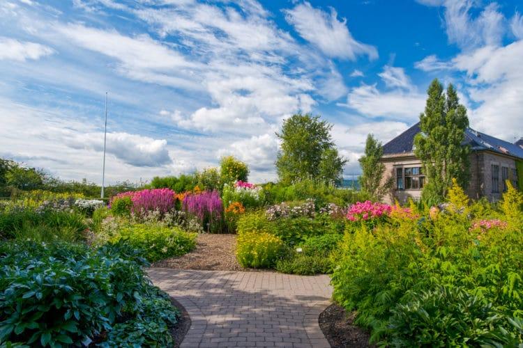 Ботанический сад Осло - достопримечательности Осло