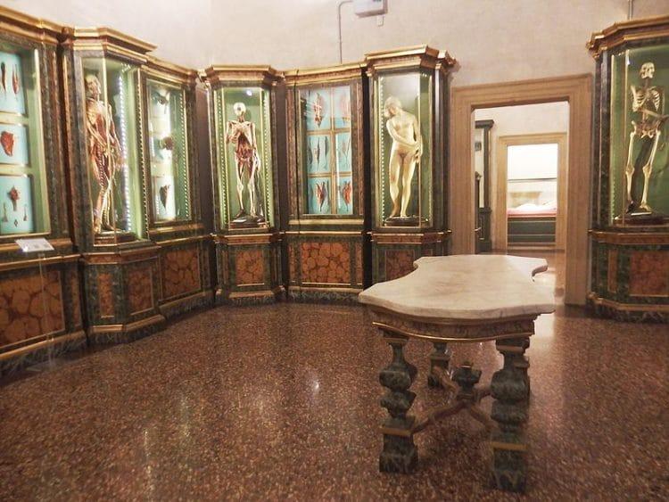 Музей Палаццо Поджи - достопримечательности Болоньи
