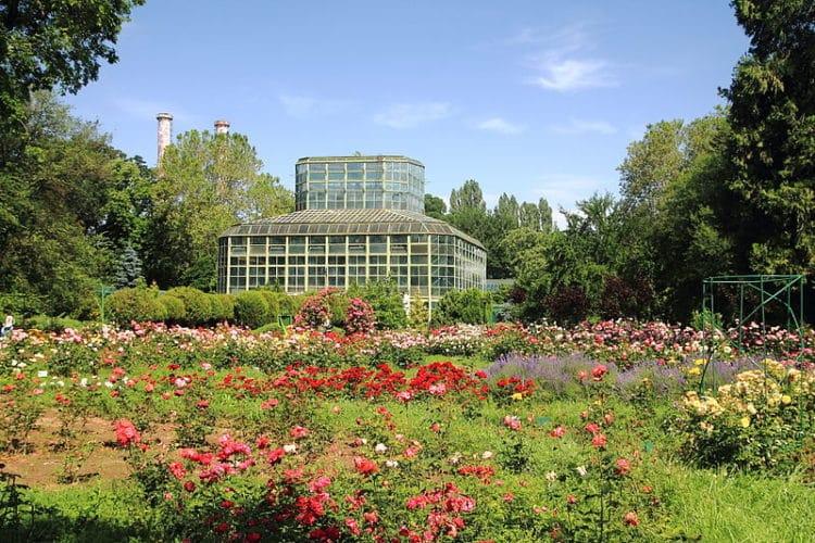 Бухарестский ботанический сад - достопримечательности Бухареста