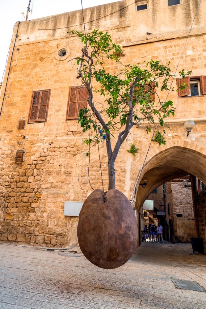 Подвешенное апельсиновое дерево - достопримечательности Тель-Авива