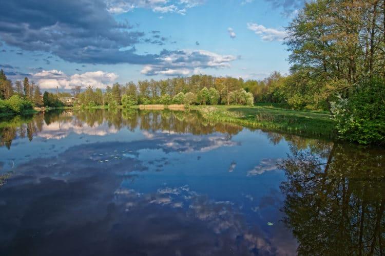 Беловежская пуща - достопримечательности Бреста
