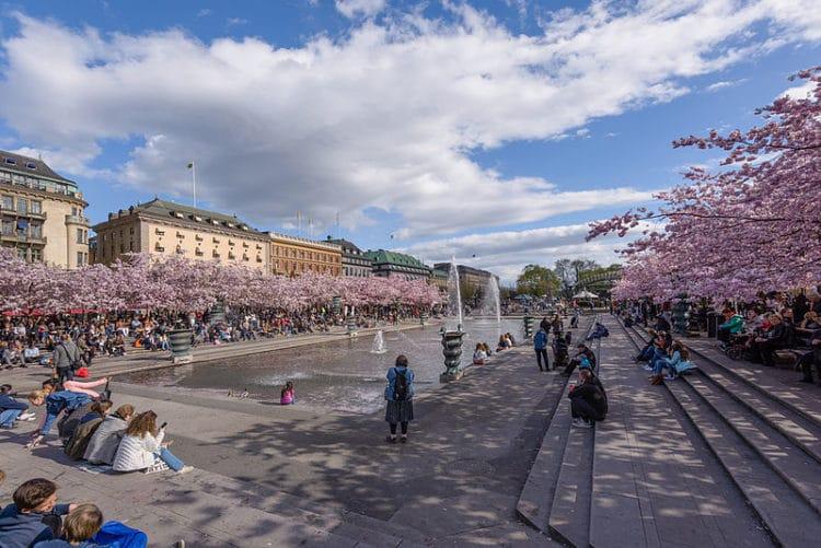 Парк Кунгстрэдгорден - Что посмотреть в Стокгольме