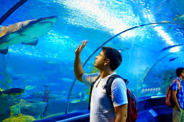 Океанариум «Underwater World Pattaya» - достопримечательности Паттайи