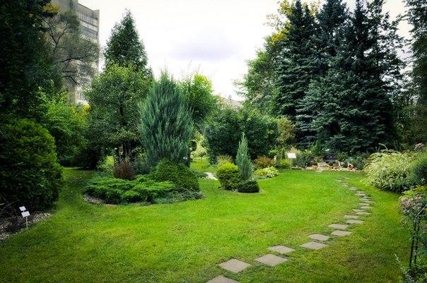 Ботанический сад ТвГУ - достопримечательности Твери